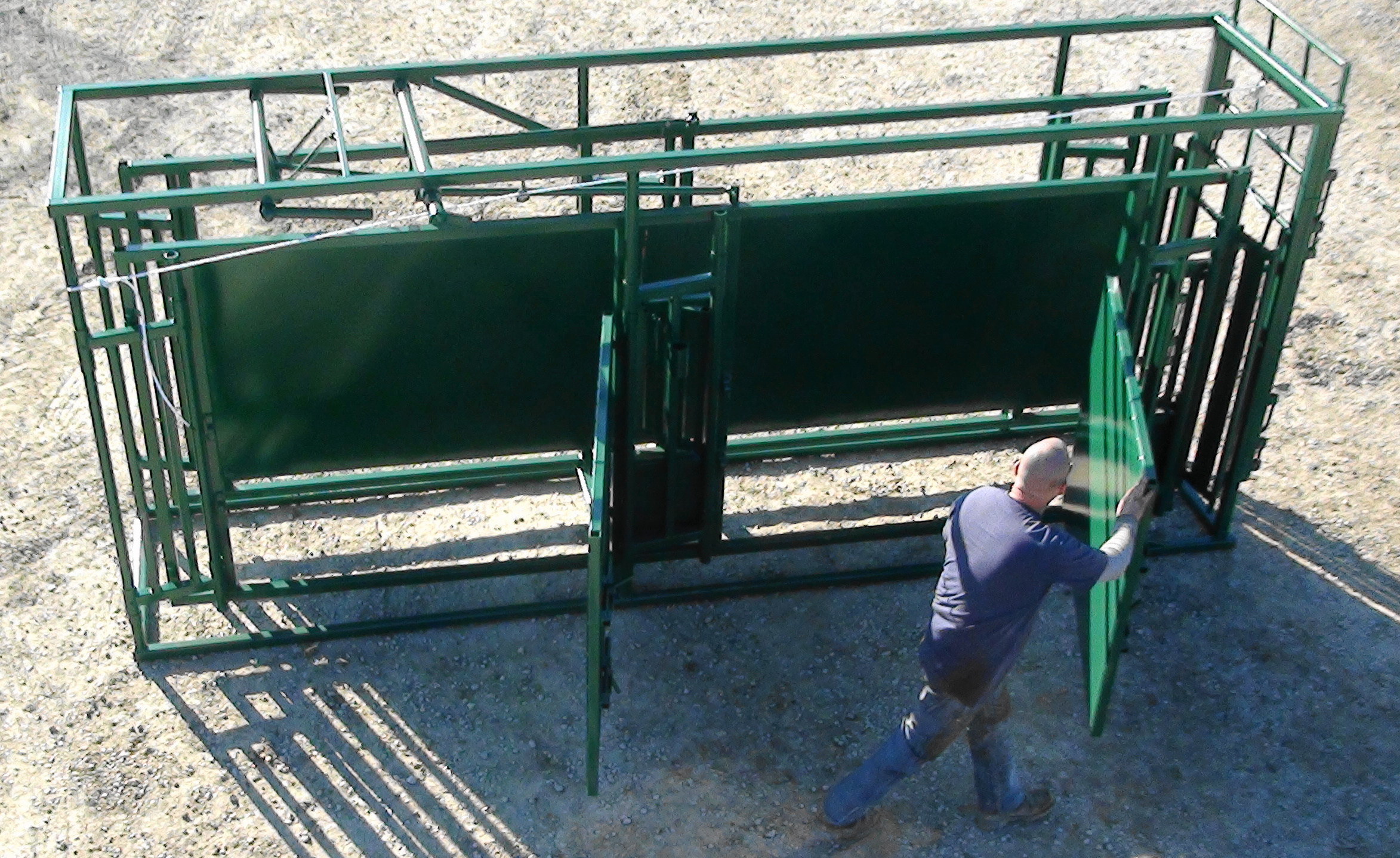 Adjustable Alleyways To Fit Any Size Operation And Cattle
